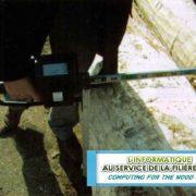 CBI 300 - Cubage de bois abattus