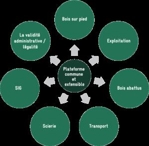 Solution logicielle intégrée pour suivre le bois « de la tige à la planche ».